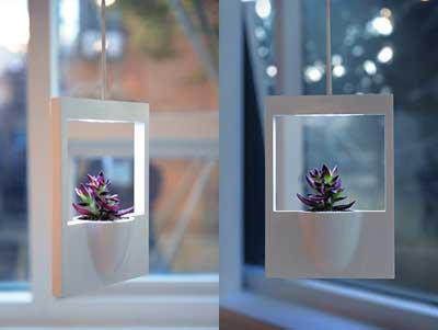 polaroid-vaso